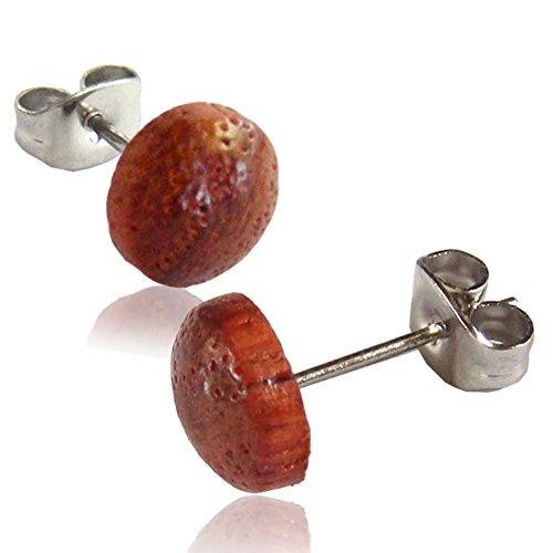 Earth Accessories Stainless Steel Rounded Organic Wood Stud Earrings